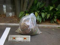 ゴミ15キロ
